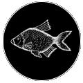 Mennoos_Diner Icon